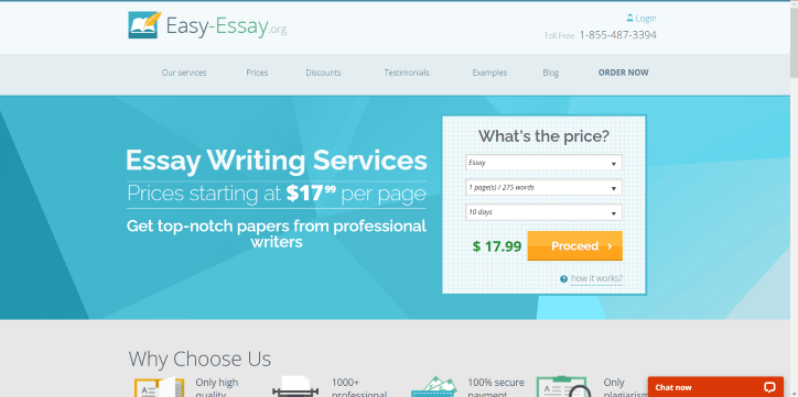 Top essay writing service org